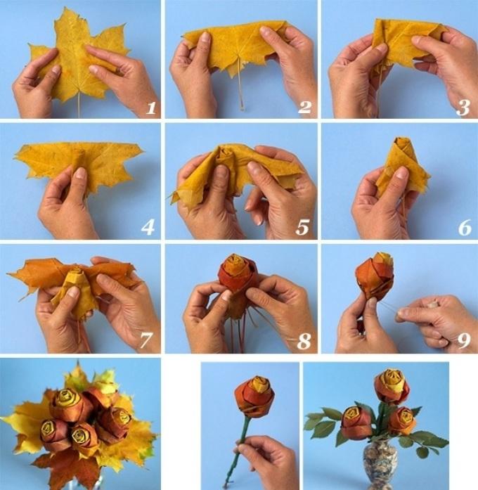 из кленовых листьев розы фото