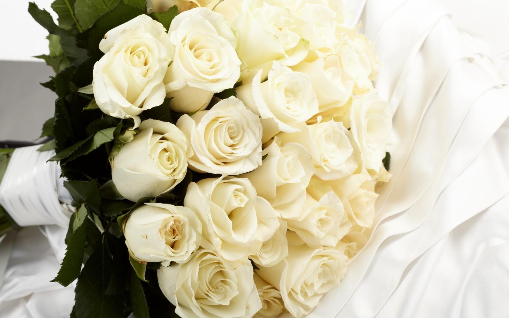 классифицируют букеты белых роз для любимой фото сама