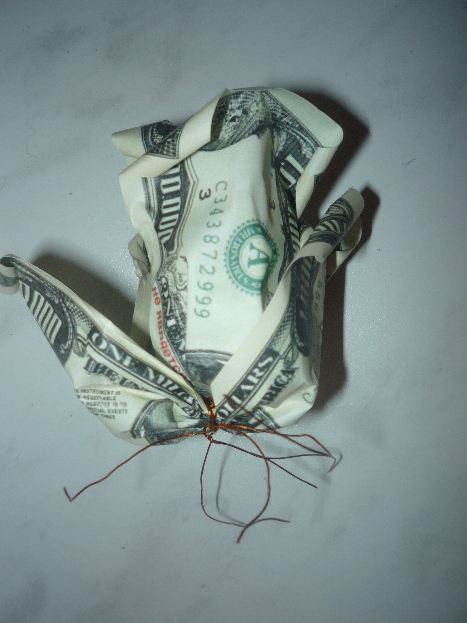Цветок приманивающий деньги